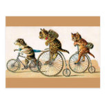 Bicycle Ride Postcards