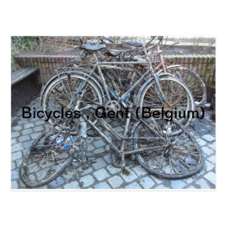 Bicycles, Ghent (Belgium) Postcard
