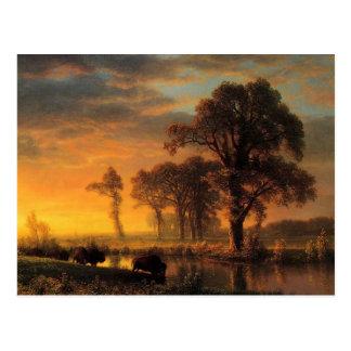 Bierstadt - Western Kansas Postcard