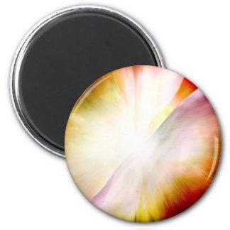 Big Bang Theory 6 Cm Round Magnet