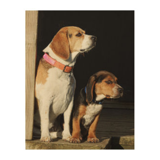 Big Beagle Sister & Little Brother Beagle Wood Wall Decor