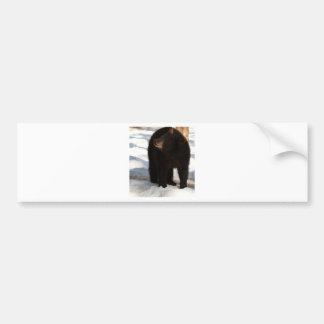 Big Bear Bumper Sticker