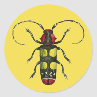 Big Beetle Bug Classic Round Sticker