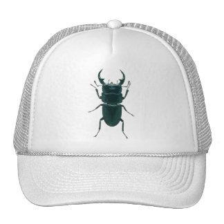 Big Black Dung Beetle Cap