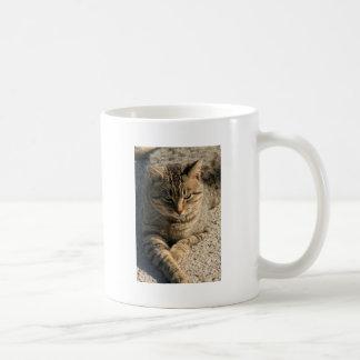 Big Boy Tabby Tom Cat Coffee Mug