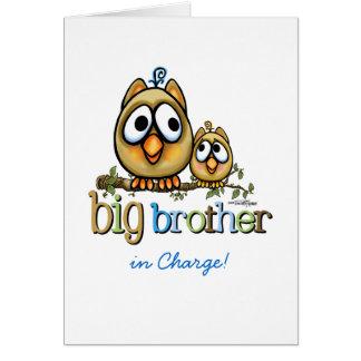 Big Brother - Baby Bro Owls Greeting Card