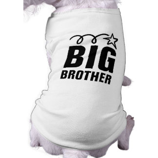 Big Brother Dog Shirt   Cute pet clothing