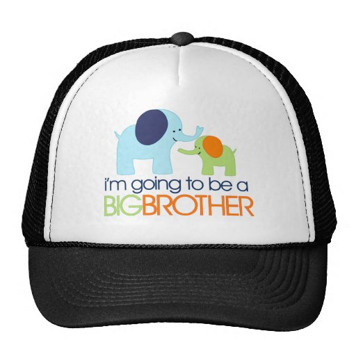 Big Brother Elephant T-shirt Hat