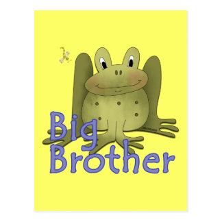 Big Brother Frog Postcard