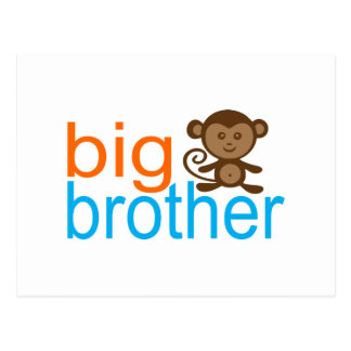Big Brother Monkey Postcard