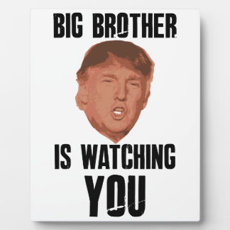 Big Brother Trump Plaque