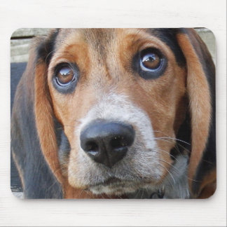 Big Brown Eyed Beagle Puppy Dog Mouse Pad