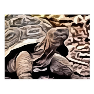 big brown turtle painting postcard
