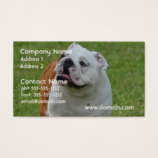 Big Bulldog Business Card