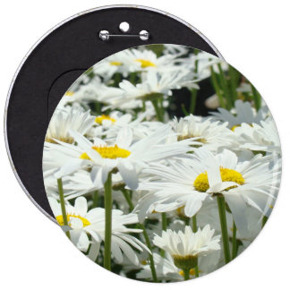 Big Button Happy White Daisy Flowers Daisies