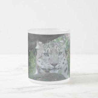 Big Cat 10 Oz Frosted Glass Coffee Mug