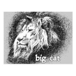 Big Cat... Postcard
