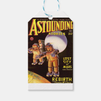 Big Chunky Spacesuits Gift Tags