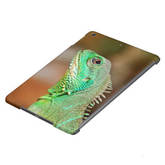 Big Eyed Lizard Cover For iPad Air