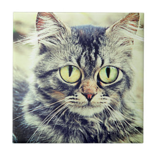 Big eyes ceramic tile