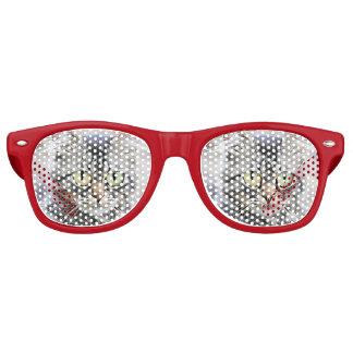 Big eyes retro sunglasses