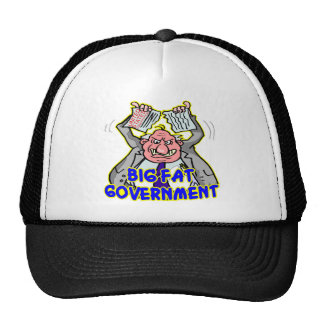 Big Fat Federal Government Ripping Up Constitution Hats
