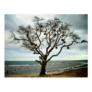 Big Fish tree Postcard