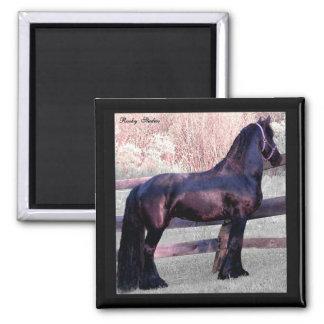 Big Friesian Horse Magnet