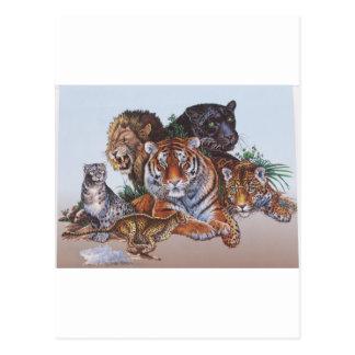 Big Game Cats Postcard