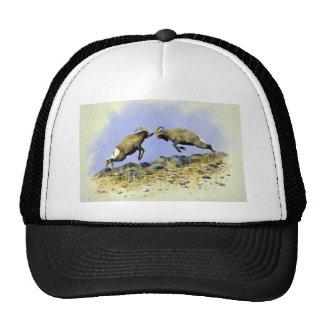 Big Horn Mesh Hat