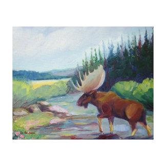 Big Horn Mountain Moose Canvas Prints