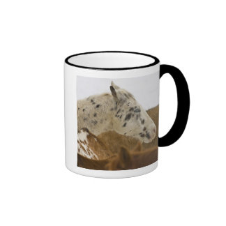 Big Horn Mountains, Horses in The Snow Ringer Coffee Mug