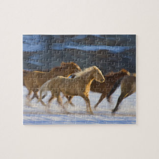 Big Horn Mountains, Horses running in the snow 2 Puzzle