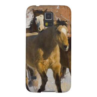 Big Horn Mountains, Horses running in the snow 3 Case For Galaxy S5