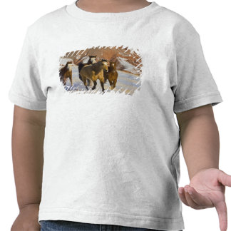 Big Horn Mountains, Horses running in the snow 3 T-shirt