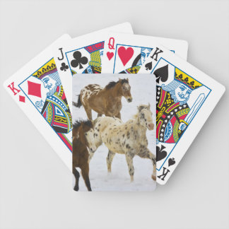 Big Horn Mountains, Horses running in the snow 4 Bicycle Poker Deck