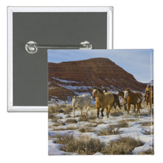 Big Horn Mountains Horses Running in The Snow Button