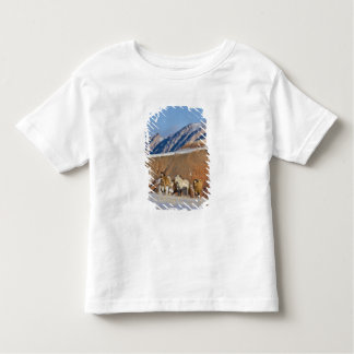 Big Horn Mountains, Horses running in the snow Tee Shirts