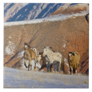 Big Horn Mountains, Horses running in the snow Ceramic Tiles