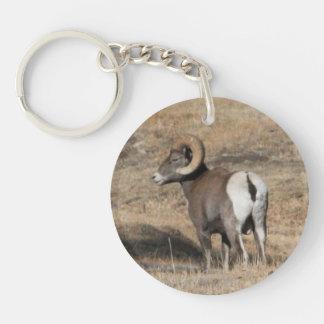 Big Horn Ram Acrylic Round Keychain
