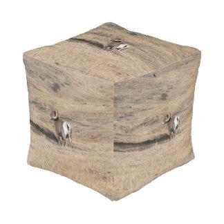 Big Horn Ram Cube Pouffe