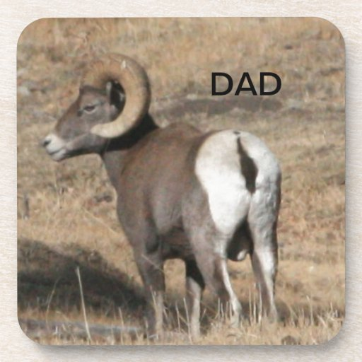 Big Horn Ram Dad Coasters