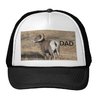 Big Horn Ram Dad Hats