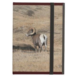 Big Horn Ram Powis iPad Case