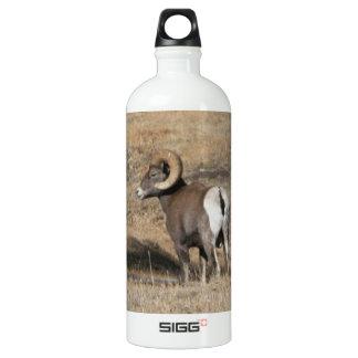 Big Horn Ram SIGG Traveller 1.0L Water Bottle
