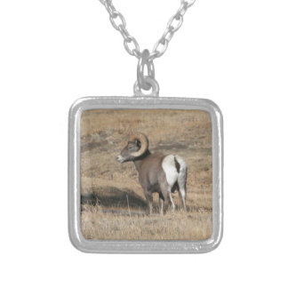Big Horn Ram Silver Plated Necklace