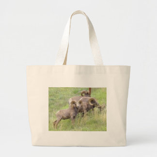 Big Horn Sheep Feeding Jumbo Tote Bag