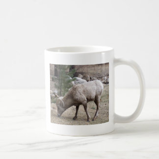 Big Horn Sheep Coffee Mug
