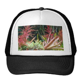Big Island of Hawaii Botanical Gardens Hat