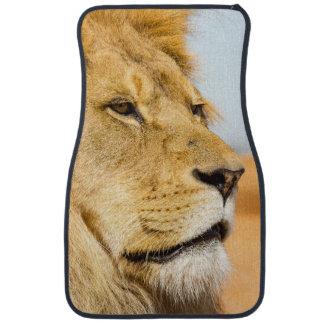Big lion looking far away car mat